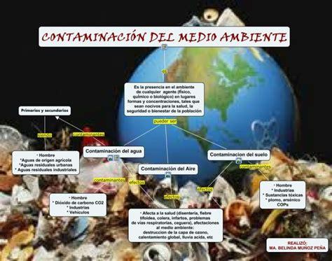 Cuadros sinópticos sobre la contaminación ambiental y sus ...