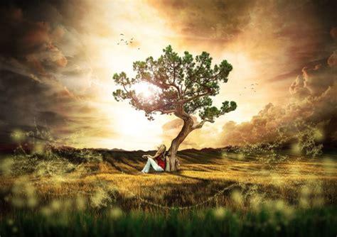 Cuál es el árbol de la vida