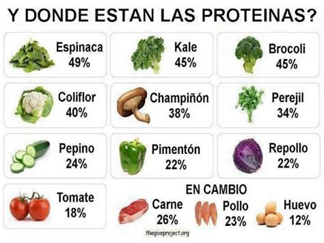 Cuáles son los alimentos vegetales con mas proteínas