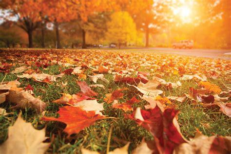 Cuándo empieza el otoño 2017: el día y hora exacto