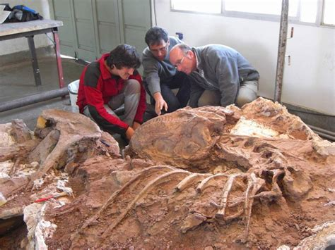 Cuarenta años tras las huellas de los dinosaurios - Burgos ...