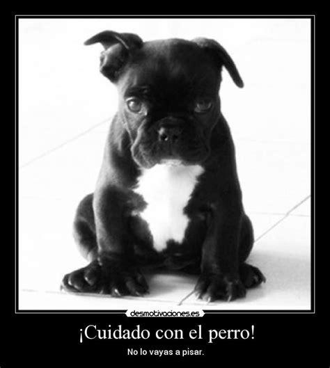 ¡Cuidado con el perro! | Desmotivaciones