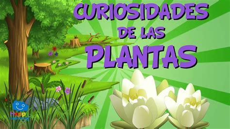 Curiosidades de las Plantas | Videos Educativos para Niños ...