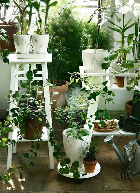 Curso: Combinar y distribuir plantas de exterior - IKEA
