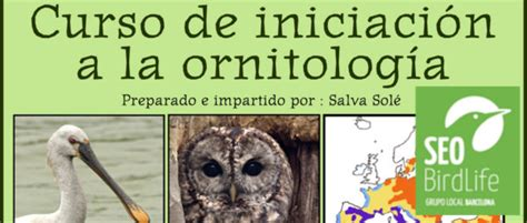 Curso de iniciación a la ornitología septiembre 2016   GL ...