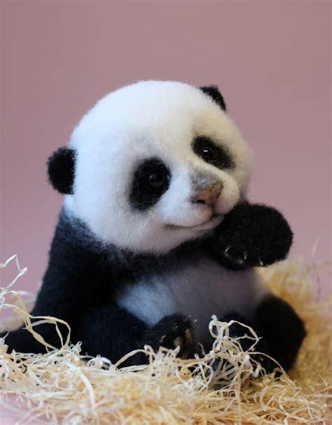 Cute Animals Pictures   TopBestPics.com