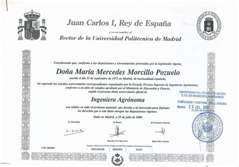 CV   mercedes morcillo