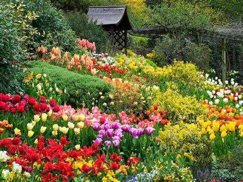 Dalat Flower Garden Explore   Uminhnationalpark