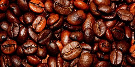 ¿De dónde viene el café? - Animal Gourmet