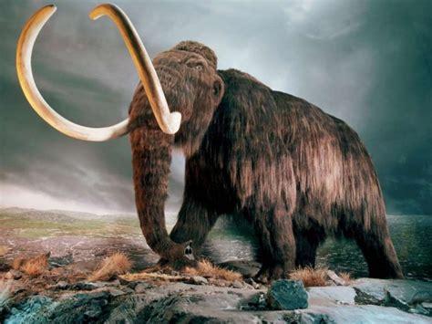 De vuelta de la Prehistoria: resucitar animales extintos