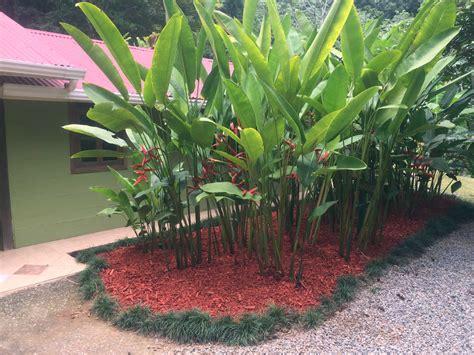 Decoración de Jardines Zona Sur Costa Rica