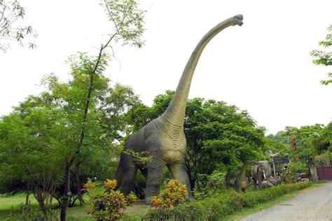 Decoración temática de dinosaurios | Figuras de ...