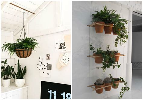 Decorar con plantas dentro de casa - ECOdECO Mobiliario