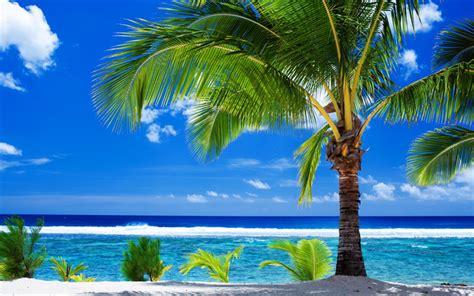 Descargar fondos de pantalla Verano, tropical, isla, playa ...