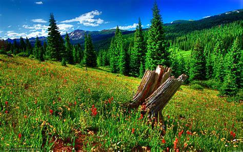 Descargar gratis Naturaleza, paisaje, verano Fondos de ...
