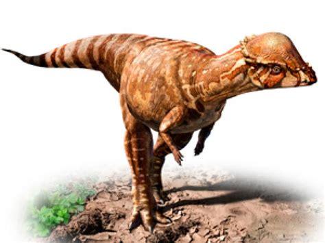Descubren los restos de un dinosaurio