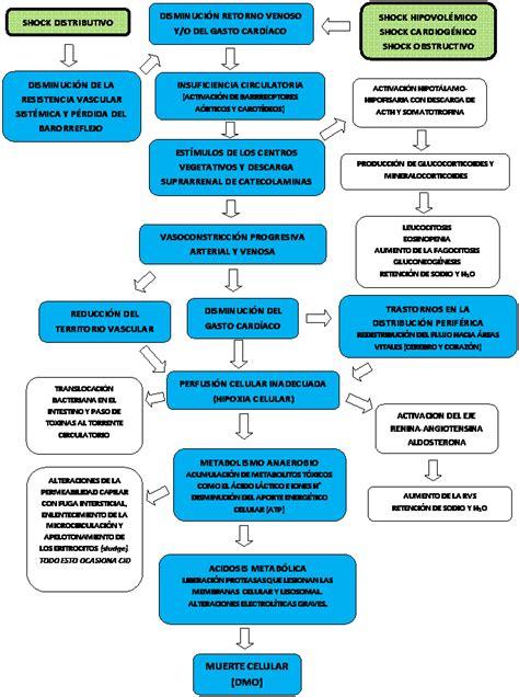 Diagnóstico de los estados de shock - Monografias.com