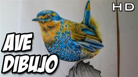Dibujando un ave con lápices de colores, ave Chucao con ...