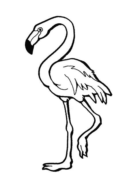 Dibujo animal flamenco - Imagui
