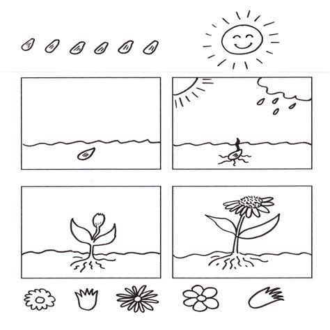 Dibujo Aparato Digestivo Para Colorear Imprimir