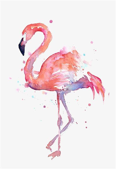 Dibujo De Flamencos, Flamingos, Acuarela, Animal Imagen ...