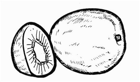 Dibujo de Kiwi para colorear. Dibujos infantiles de Kiwi ...