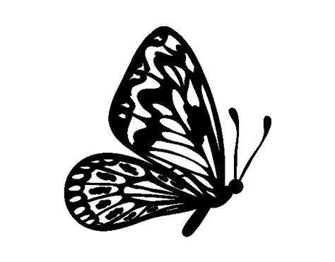 Dibujo de Mariposa alas normales para Colorear - Dibujos.net