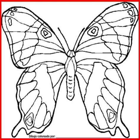 Dibujo De Mariposa Para Colorear E Imprimir | Colorear.website