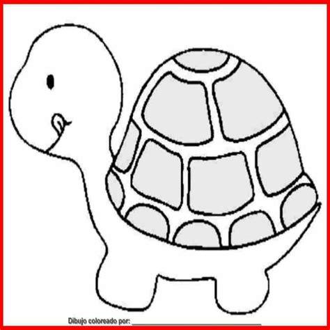 Dibujo De tortuga Para Colorear E Imprimir | Colorear.website
