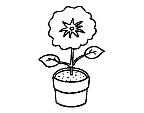 Dibujo de Una flor de primavera para Colorear - Dibujos.net