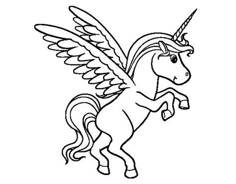 Dibujo de Unicornio joven para Colorear   Dibujos.net