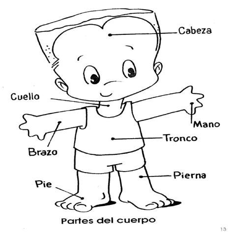 Dibujo Del Corazon Y Sus Partes Para Colorear