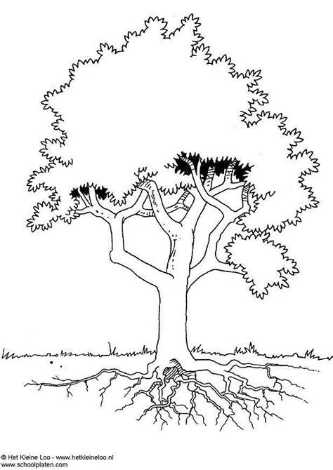 Dibujo para colorear Árbol   Img 3724