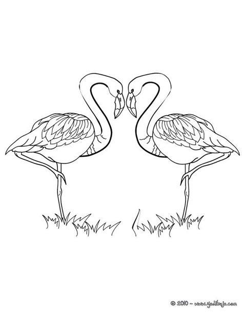 Dibujo para colorear FLAMINGOS CORAZON | LOVE mi amor ...