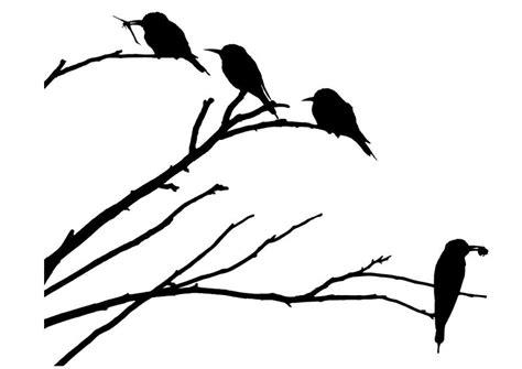 Dibujo para colorear pájaros sobre una rama   Img 29677