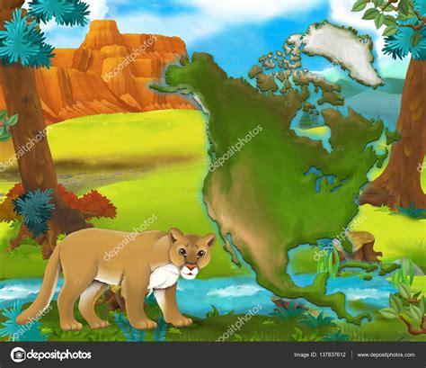 Dibujos animados Puma mapa continente   ilustración para ...