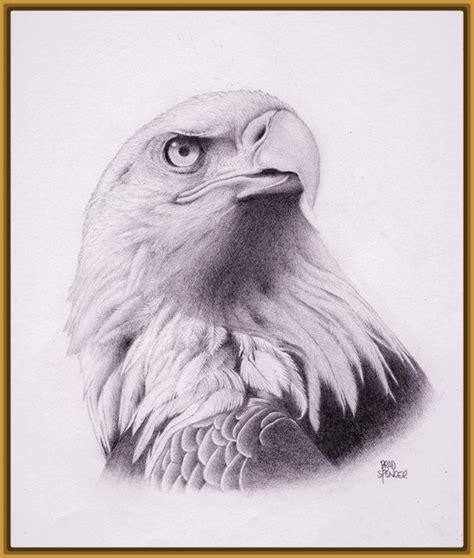 dibujos de aves a lapiz Archivos   Imagenes de Pajaros