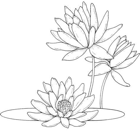 Dibujos de flores para imprimir