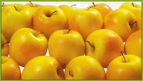 Dibujos de frutas de color amarillo muy ricas | Imagenes ...