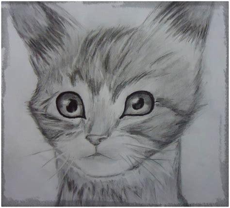 Caras De Gatos Para Dibujar Cantineoqueteveo
