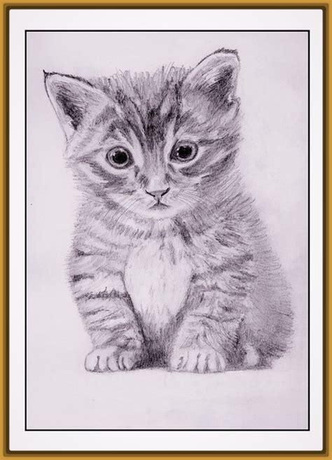 Dibujos De Gatos Tiernos Related Keywords - Dibujos De ...