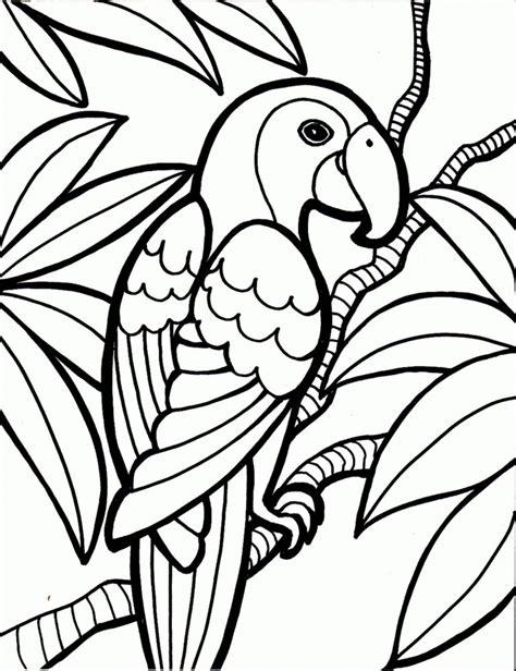 Dibujos de LOROS (Para Colorear y Pintar)
