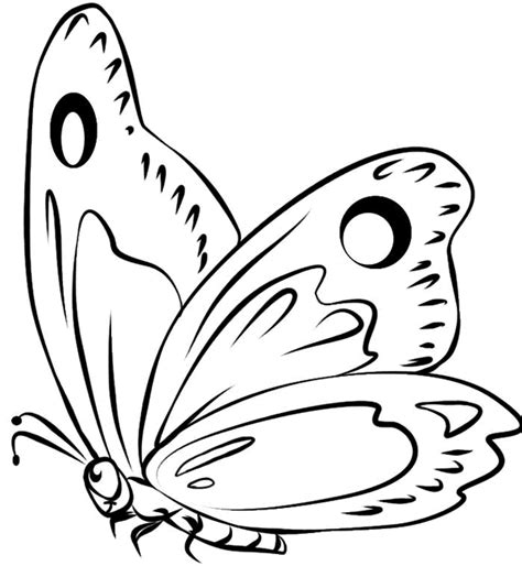 Dibujos de mariposas para recortar - Imagui
