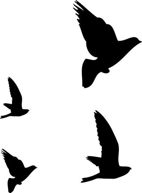 dibujos de pajaros volando tumblr - Buscar con Google ...
