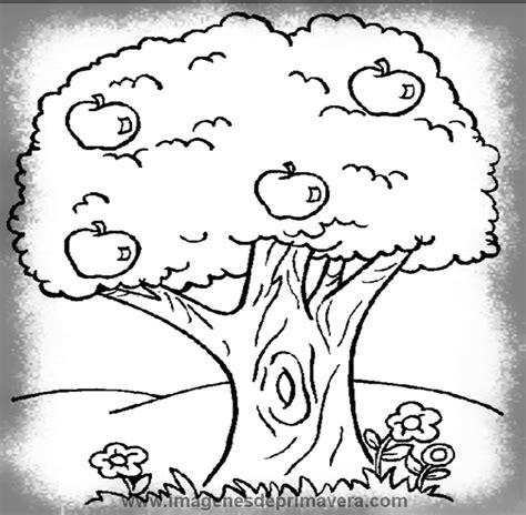 Dibujos De Primavera Niños | Imágenes de Primavera