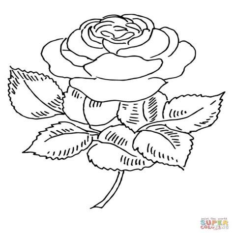 Dibujos De Rosas Para Colorear P繝筍ginas Para Imprimir Y ...