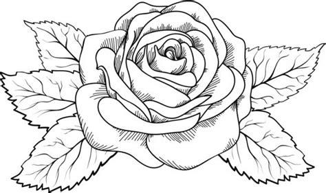 Dibujos Flores para Colorear e Imprimir Lindas   Dibujos ...