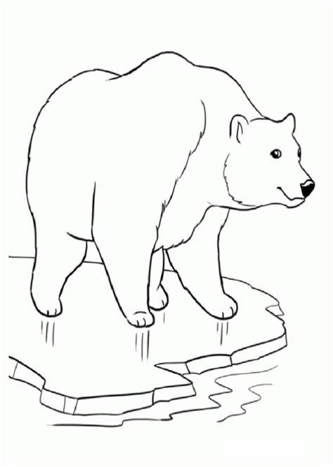 dibujos osos polares para colorear - Dibujos para colorear
