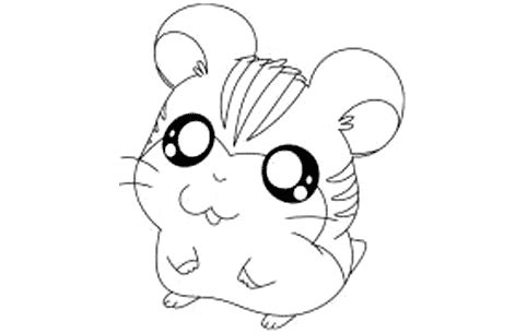 Dibujos para calcar de animales graciosos - Imagui