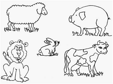 Dibujos Para Colorear De Animales Viviparos ~ Ideas ...
